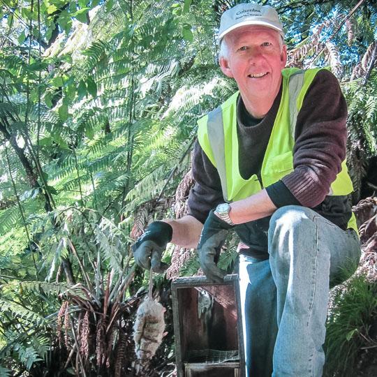 Abel Tasman National Park Conservation - The Abel Tasman Birdsong Trust